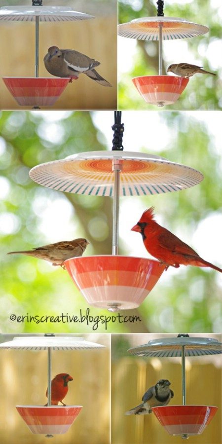 8 Simple Ways to Make a DIY Bird Feeder home made bird feeders easy simple make your own handy mano manomano bowl plate