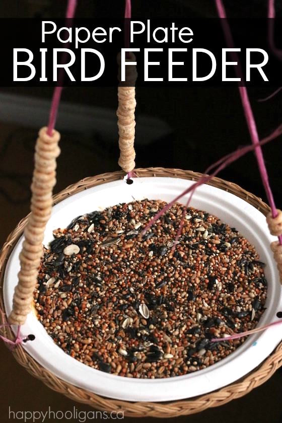 8 Simple Ways to Make a DIY Bird Feeder home made bird feeders easy simple make your own handy mano manomano paper plate